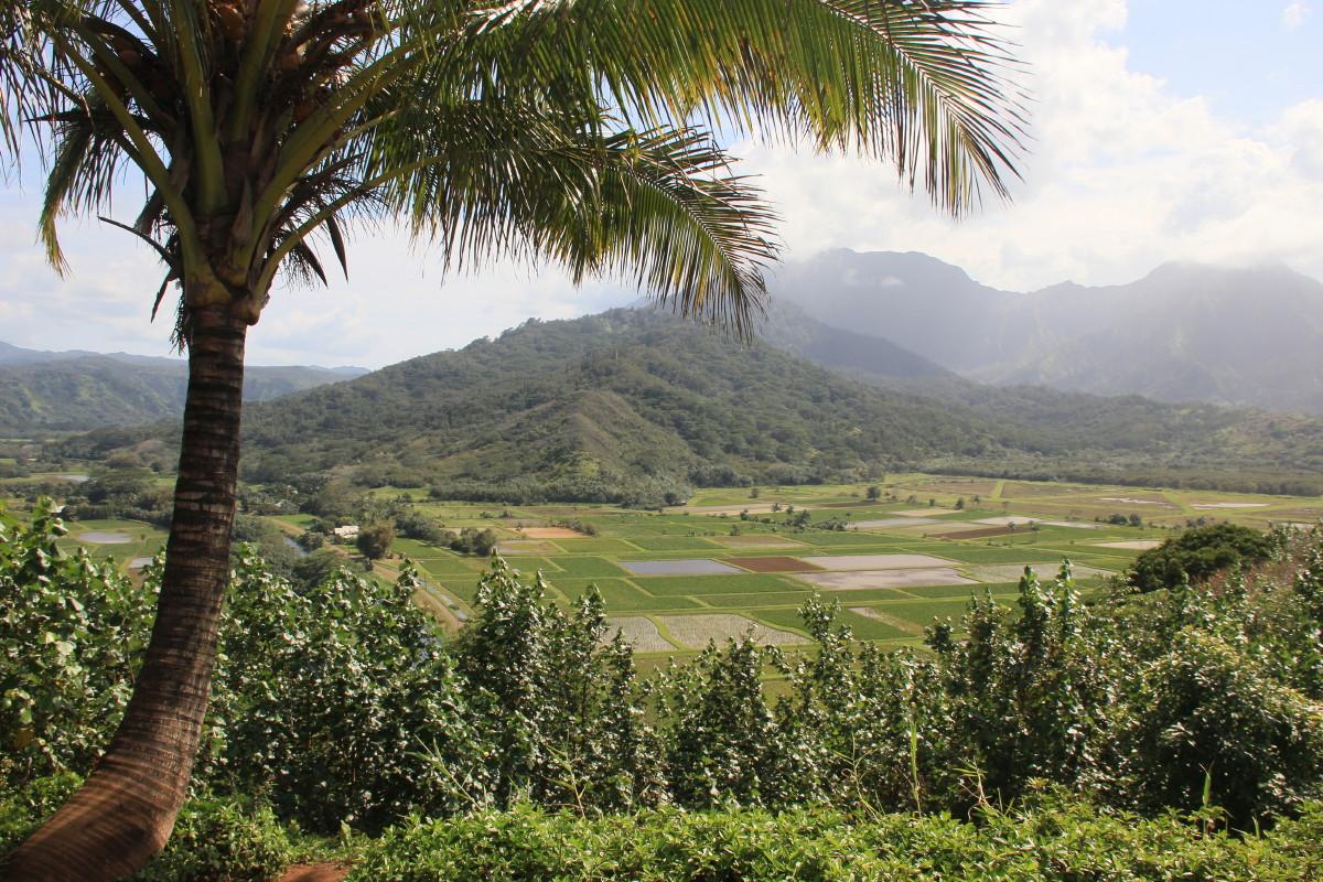 ハナレイ渓谷展望台
