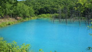 北海道5/美瑛/青い池