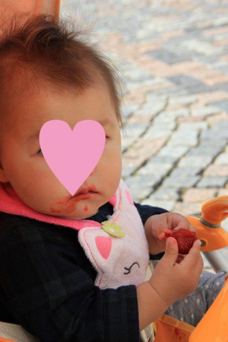 イチゴを食べる娘