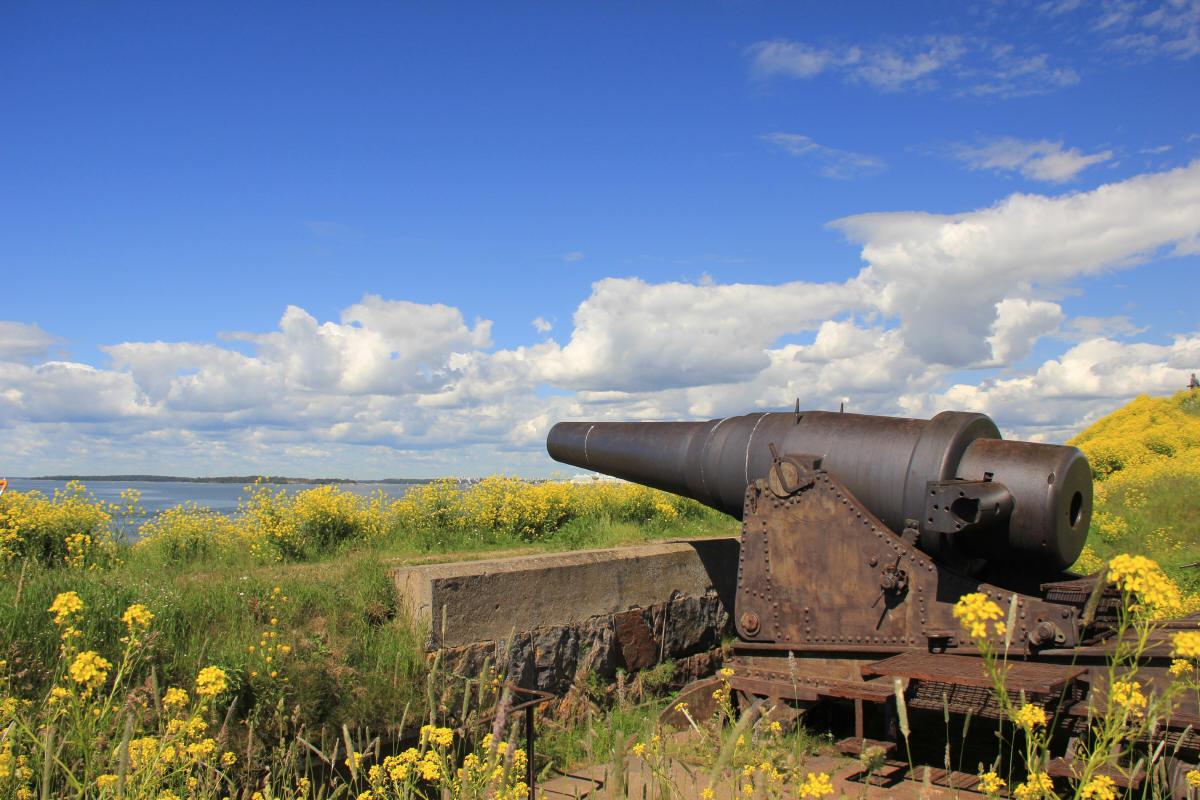 大砲と菜の花畑