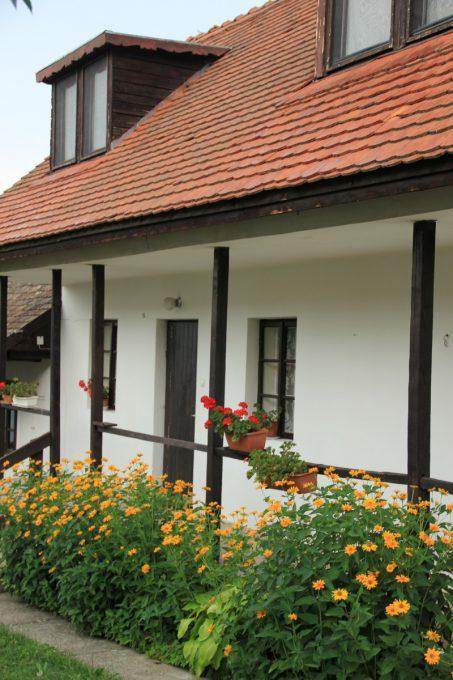 パローツ様式の家