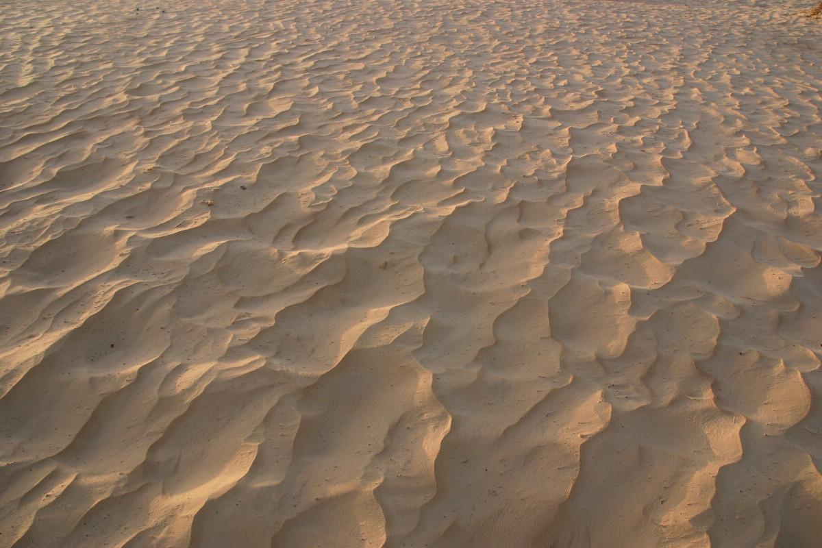 朝日を浴びた砂漠