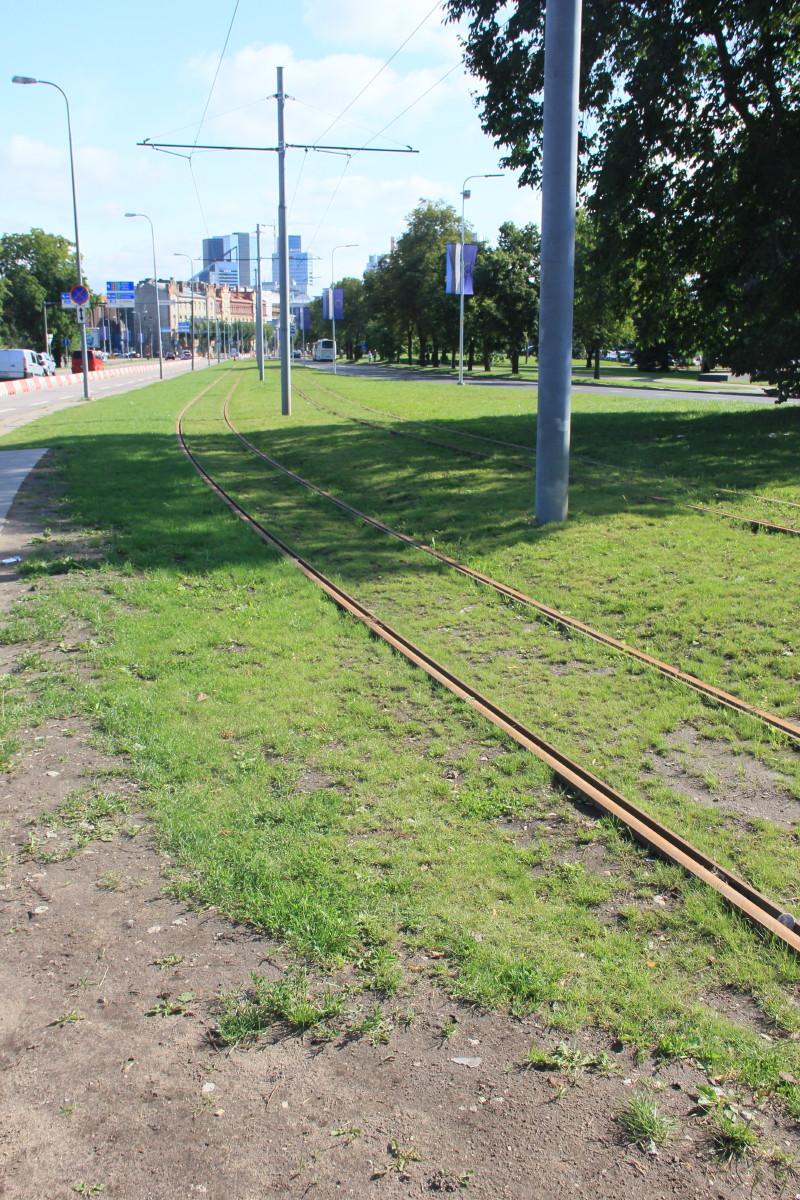路面電車の線路